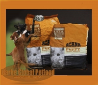 Acana Puppy Large Breed 17kg getreidefrei